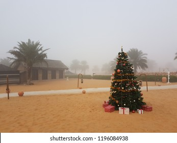 Christmas Tree In The Desert.Christmas Tree Desert Stock Photos Images Photography