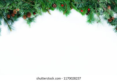 Christmas tree evergreen branches placed on top of a white background