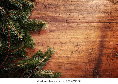 Christmas tree fir and old wooden wall background.