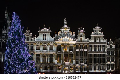 Christmas tree in front of illuminated guild houses in the Grand Place, the focal point of Brussels, Belgium