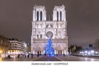 Christmas Tree in front of Notre Dame de Paris