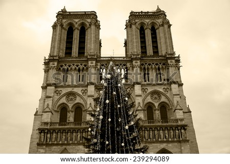 Christmas Tree Front Notre Dame Cathedral Stock Photo Edit