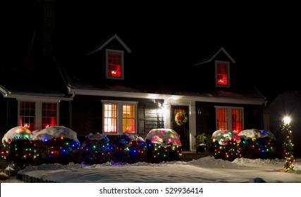 A Christmas Tree light in the night