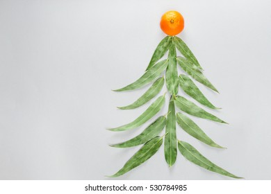 Christmas tree made of eucaliptus leaves and mandarin. Flat lay. Holiday concept. Copy space
