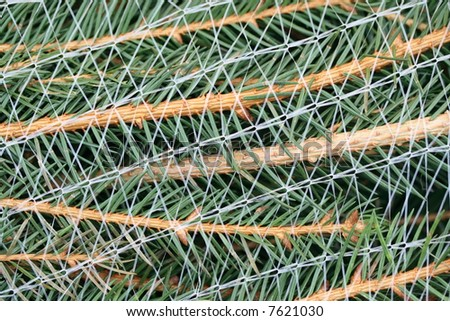 Christmas Tree Netting Stock Photo Edit Now 7621030 Shutterstock
