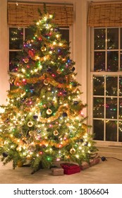 christmas tree at night with lights