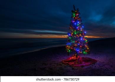 Christmas Tree On beach At Sunset