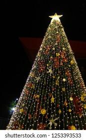 christmas tree on the night before chrismas day.