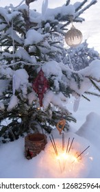 Christmas tree, outdoor decoration