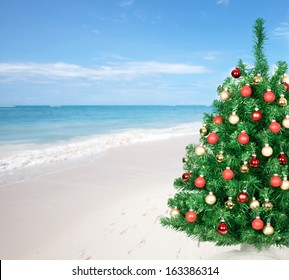 Christmas tree over beach background. Vacation destination.
