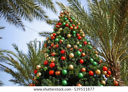christmas tree and palm trees decorated in tropical holiday location - Palm Tree Decorated For Christmas