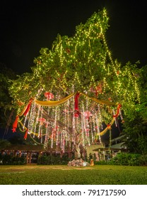 Christmas tree with presents, South Goa in India