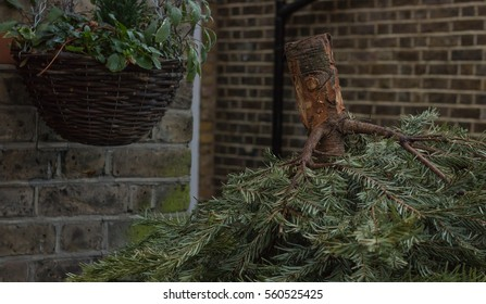 A Christmas Tree is shown upside down in a garbage bin, next to a hanging plant.
