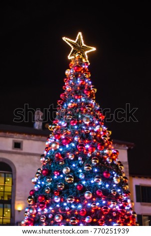 christmas tree in south africa - Christmas In South Africa