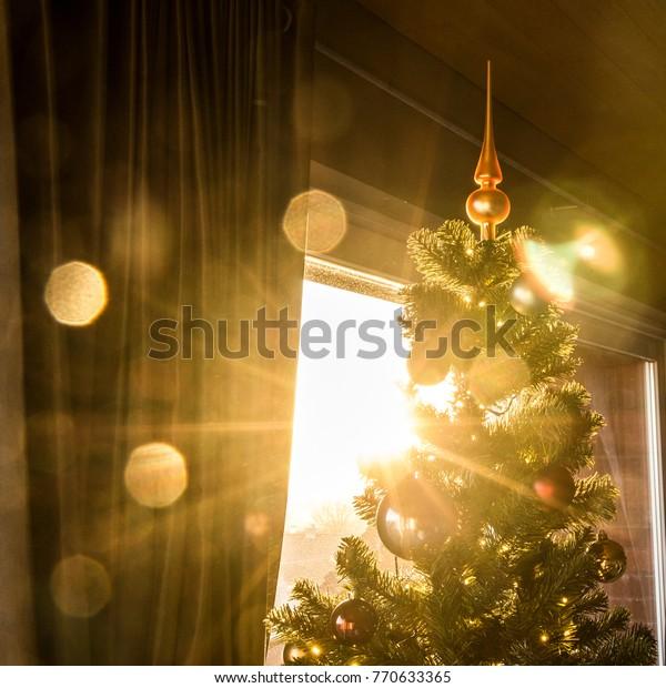 Christmas Tree Topper Backlight Sun Shining Stock Photo Edit Now