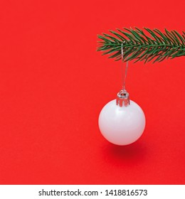 Christmas tree toy simple white ball hanging on green fir tree branch close up. Merry Christmas and New Year greeting card with copy space.