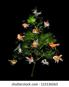 christmas tree underwater concept with goldfish ornament on black background