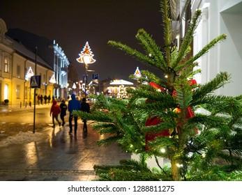 Christmas tree at Vilnius street at night