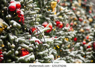 Christmas Trees Decorated With Colorful Balls in the Real Snow