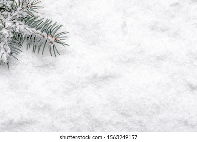 Christmas white background with snow and christmas fir tree branch, flat lay, top view