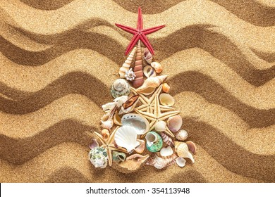 Christmass tree from shells.