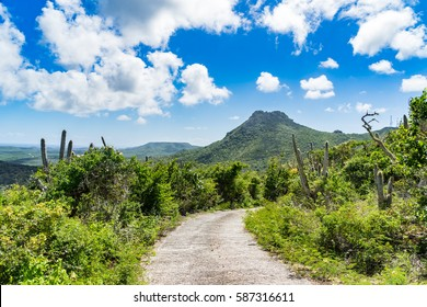 Christoffel National park   - Views around Curacao a small Caribbean Island