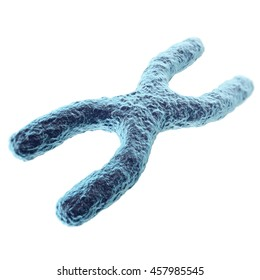 Chromosome isolated on white background. with depth of field effect, scientific concept. 3d illustration