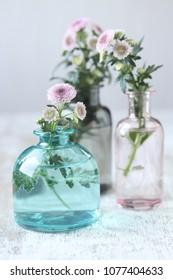 Chrysanthemum flowers in vase