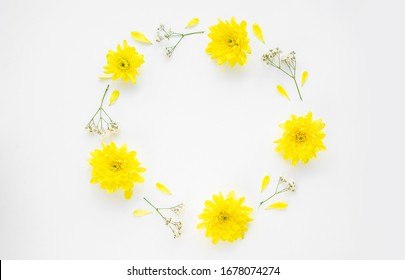 Chrysanthemum and gypsophila flowers arranged in a round shape isolated on a white background with copyspace. Selective focus, horizontal image