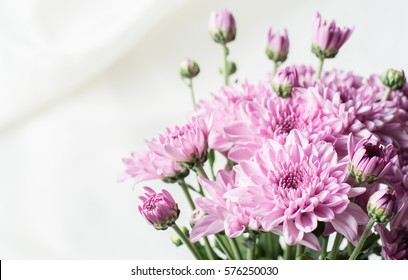 Chrysanthemum pink or purple on white fabric.