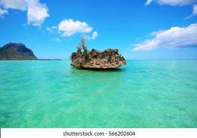 chrystal rock near Benitiers Island Mauritius, Africa