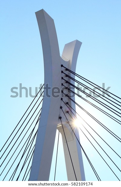 Chuo Ohashi is a bridge over the Sumida River, located in Chuo-ku, Tokyo. Structural type Two-span continuous steel diagonal bridge Bridge length 210.7 m Width 25.0 m Completion August 26, 1993