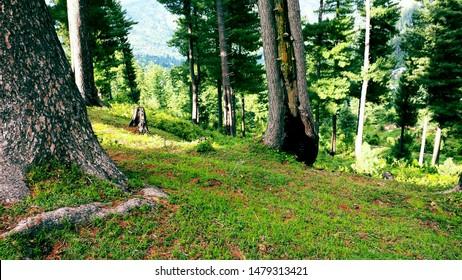 chura in azad kashmir beautiful place