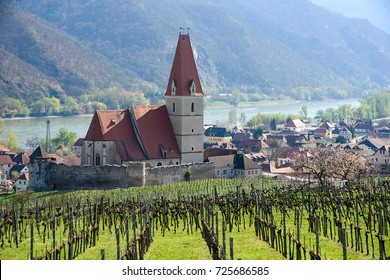 Church of the Assumption of the Virgin Mary (german: Wehrkirche Maria Himmelfahrt), surrounden with grape fieldes. Small town of Weissenkirchen-in-der-Wachau, district of Krems-Land, Lower Austria.