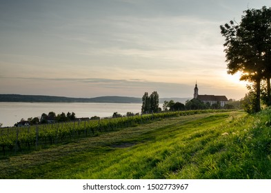 Church Basilica de Birnau at Lake Constance or Bodensee in Baden-Wuerttemberg, Germany (Zisterzienser Priorat Kloster). The vineyards in the foreground.