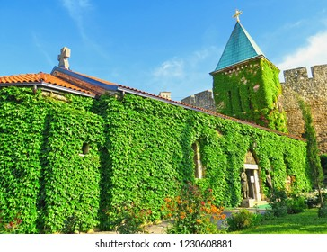 Church of the Holy Mother of God (Crkva Ruzica) in Kalemegdan fortress and castle, hole building is covered with clambering plant. Belgrade Serbia