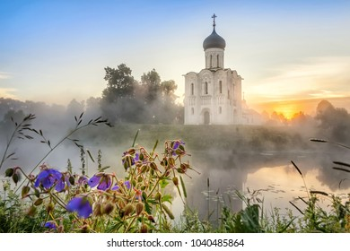 Church of the Intercession on the Nerl with meadow flowers on foreground in Bogolyubovo, Vladimirskaya oblast, Russia