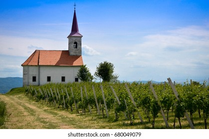 Church St. Ana Beautiful typical small church surrounded by vineyards in Bela Krajina Slovenia - Shutterstock ID 680049079