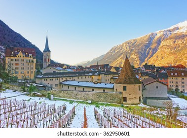 Church of St Martin and vineyard in Chur at sunrise. Chur is the capital of canton Graubunden in Switzerland. It lies in the Alpine Grisonian Rhine valley. The city is the oldest town of Switzerland