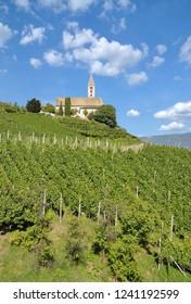 Church in the Vineyard of Kurtatsch at South Tirol Wine Road,Trentino,Alto Adige,Italy