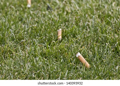 Cigarette butts discarded in lovely green grass