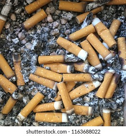 Cigarette butts on small stones in ashtray.