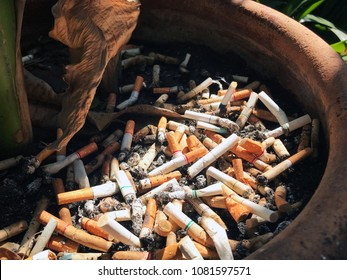 Cigarette butts or tobacco butts was throw in the trash. World no tobacco day concept background.