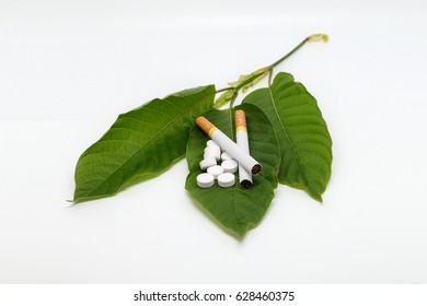 Cigarette and medicine, pill on Mitragyna speciosa leaf (kratom) plant in thailand. Close up and isolated on white background