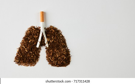 Cigarette smoker's lungs isolated on white background with copy space. Smoking kills, concept with cigarette and tobacco. No smoking concept with cigarettes and tobacco