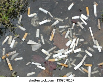 Cigarette stub in city slough