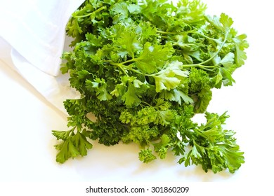 Cilantro isolated on white, selective focus