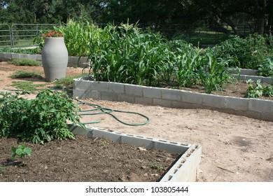 cinder block urban garden