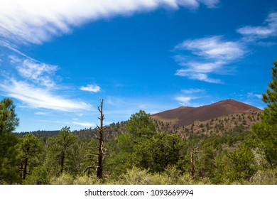 The cinder cone named Sunset Crater volcano exploded about a thousand years ago, spreading lava over the area east of what is now Flagstaff, Arizona.