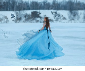 Cinderella in a luxurious, lush, blue dress with a magnificent train. A girl walks on a frozen lake covered with snow. Near her flies a bird the woman smiles sweetly at her for a meeting. Art photo.